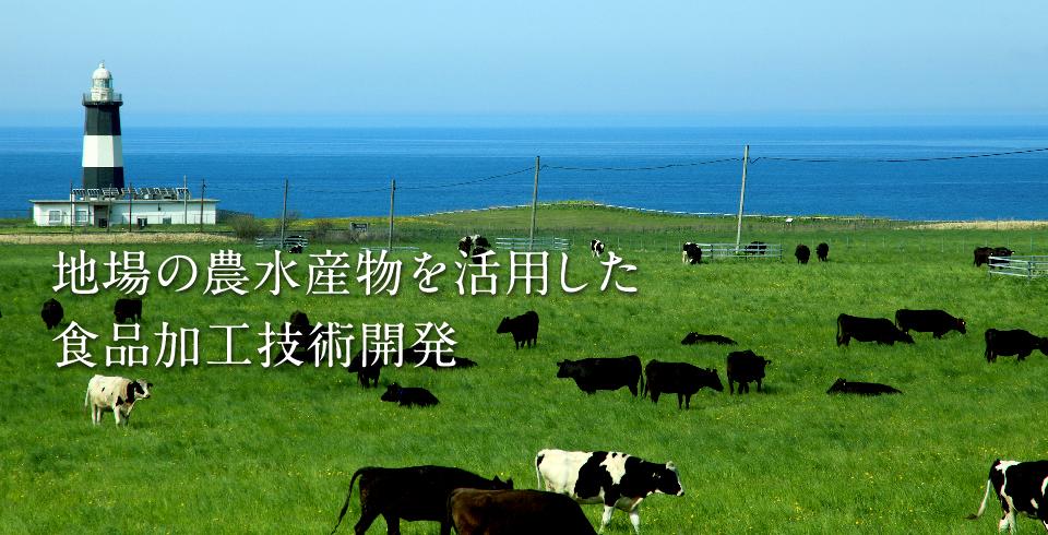 地場の農水産物を活用した食品加工技術開発